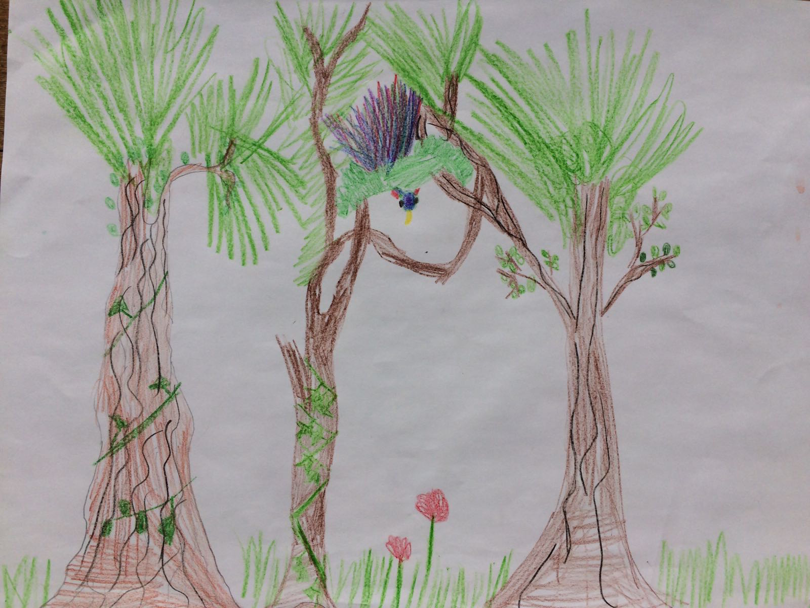 Parrot in the park, by Toran