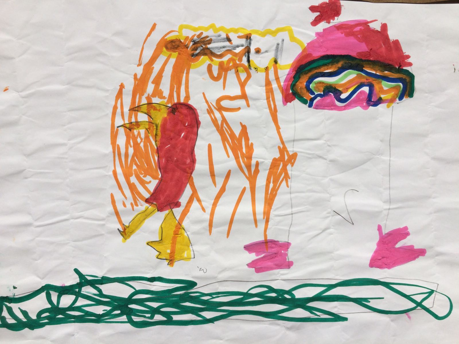 Parrot and rainbow, by Connor