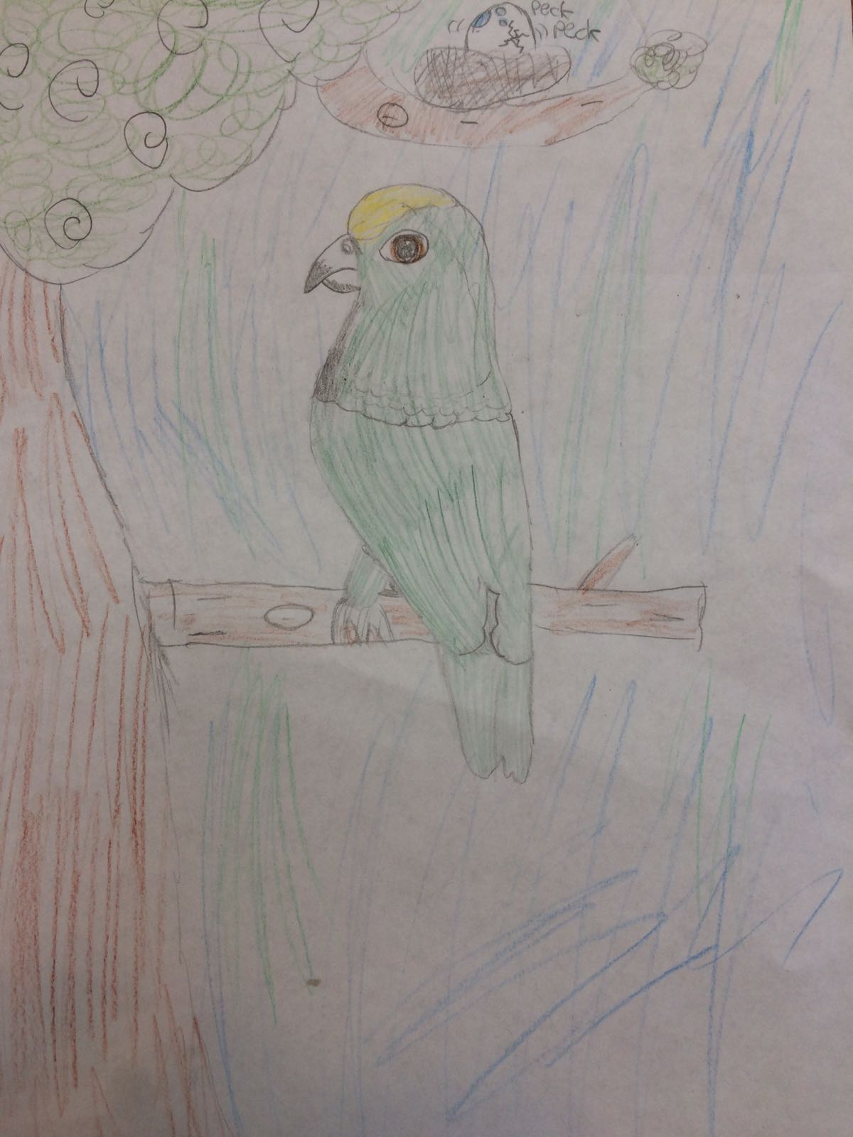 Pretty green parrot, by Emily