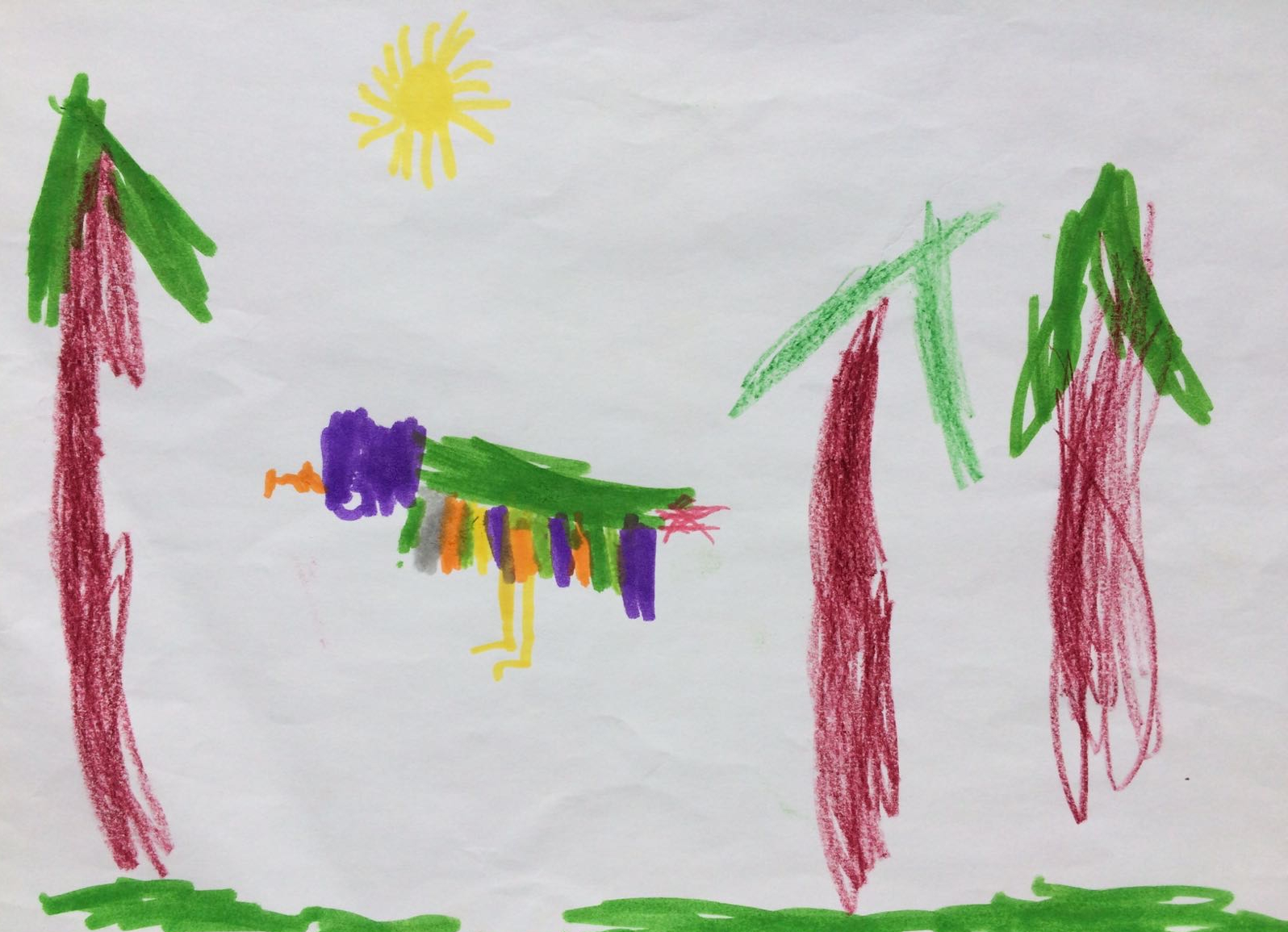 Parrot in the sunshine, by Nathan