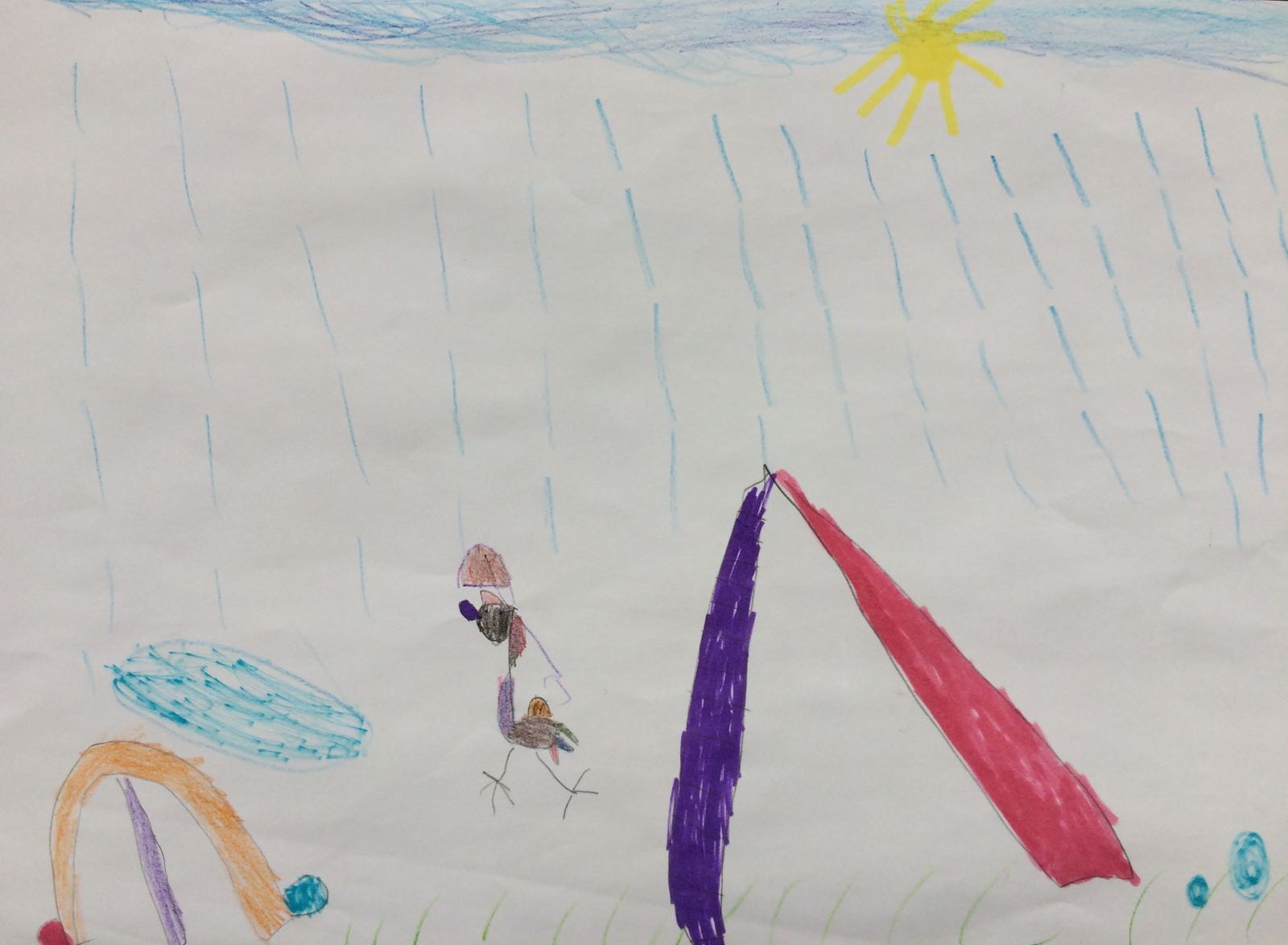 Parrot in the rain, by Lily