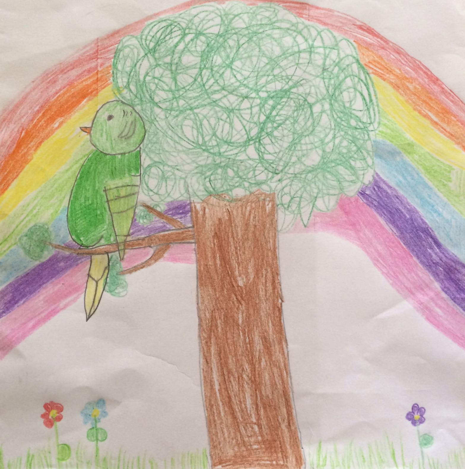Parrot in a tree, by Emily