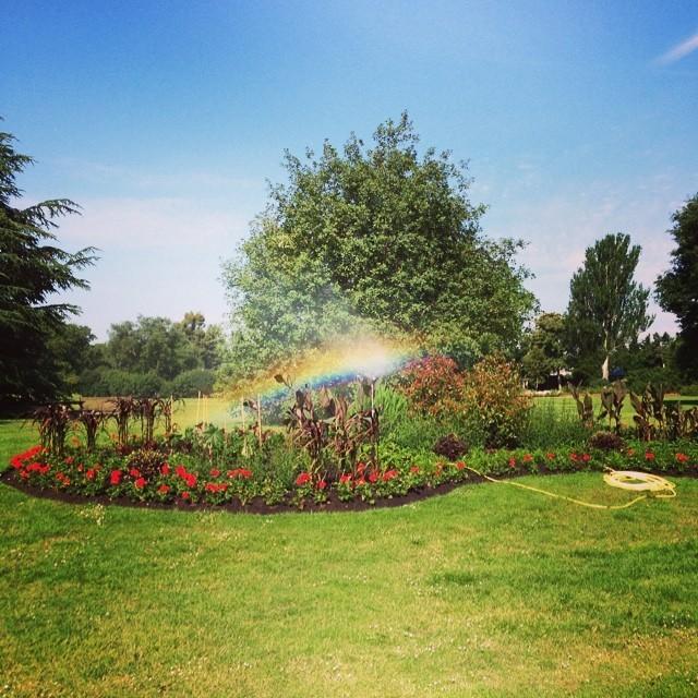 Taste the rainbow! Joyous cycle through @kewgardens on my way to @GrowWildUK HQ. The newly planted beds look gorgeous in the sunshine! #rainbow #kewgardens #letsgrowwild