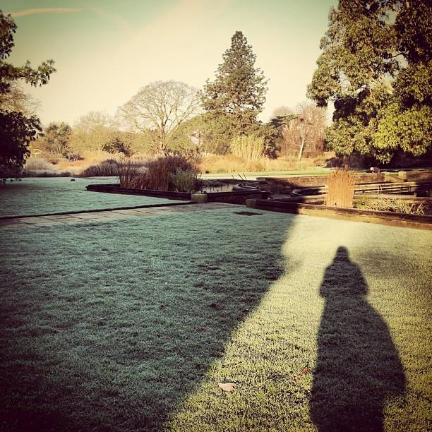 Bright and beautiful morning @kewgardens! #nature #wildlife #london #photography
