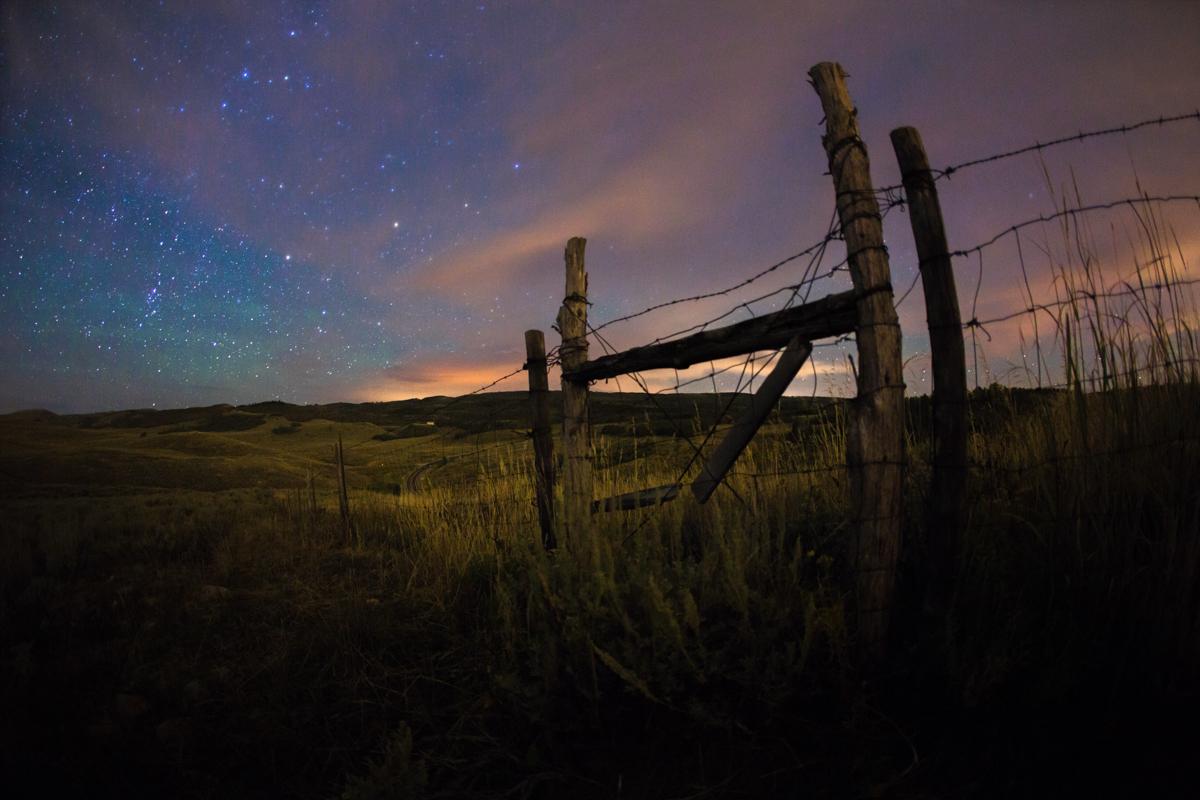 Gate in the Field.jpg