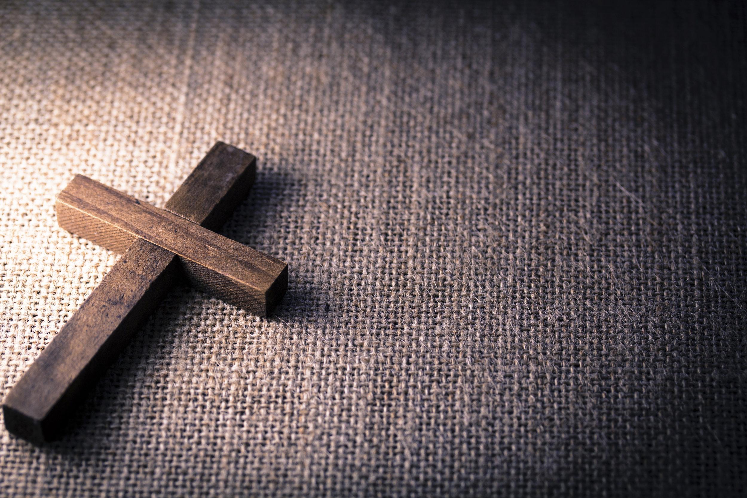 En esto hemos conocido el amor, en que él puso su vida por nosotros; también nosotros debemos poner nuestras vidas por los hermanos.   1 Juan 3:16 RVR1960