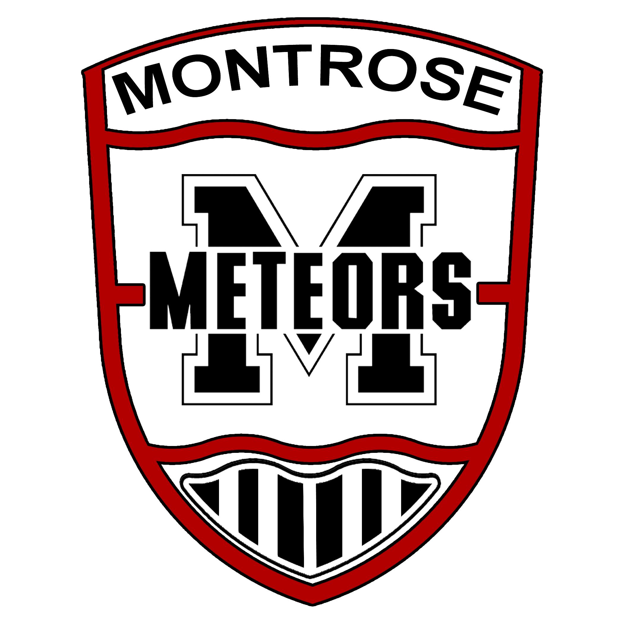 Montrose Color Logo.jpg
