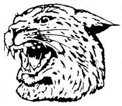 Wildcat_Head.jpg