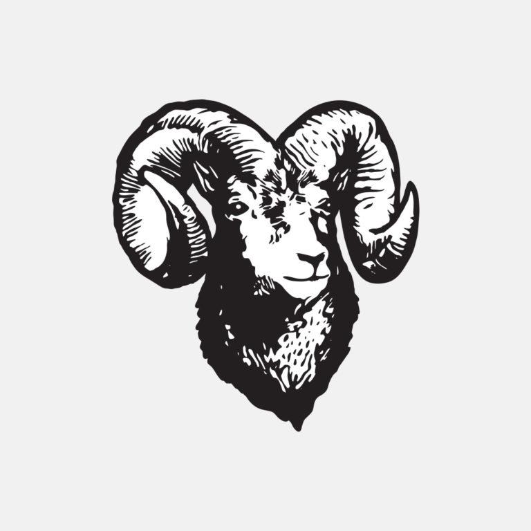 blacksheep-1920x1080-sheephead-768x768.jpg