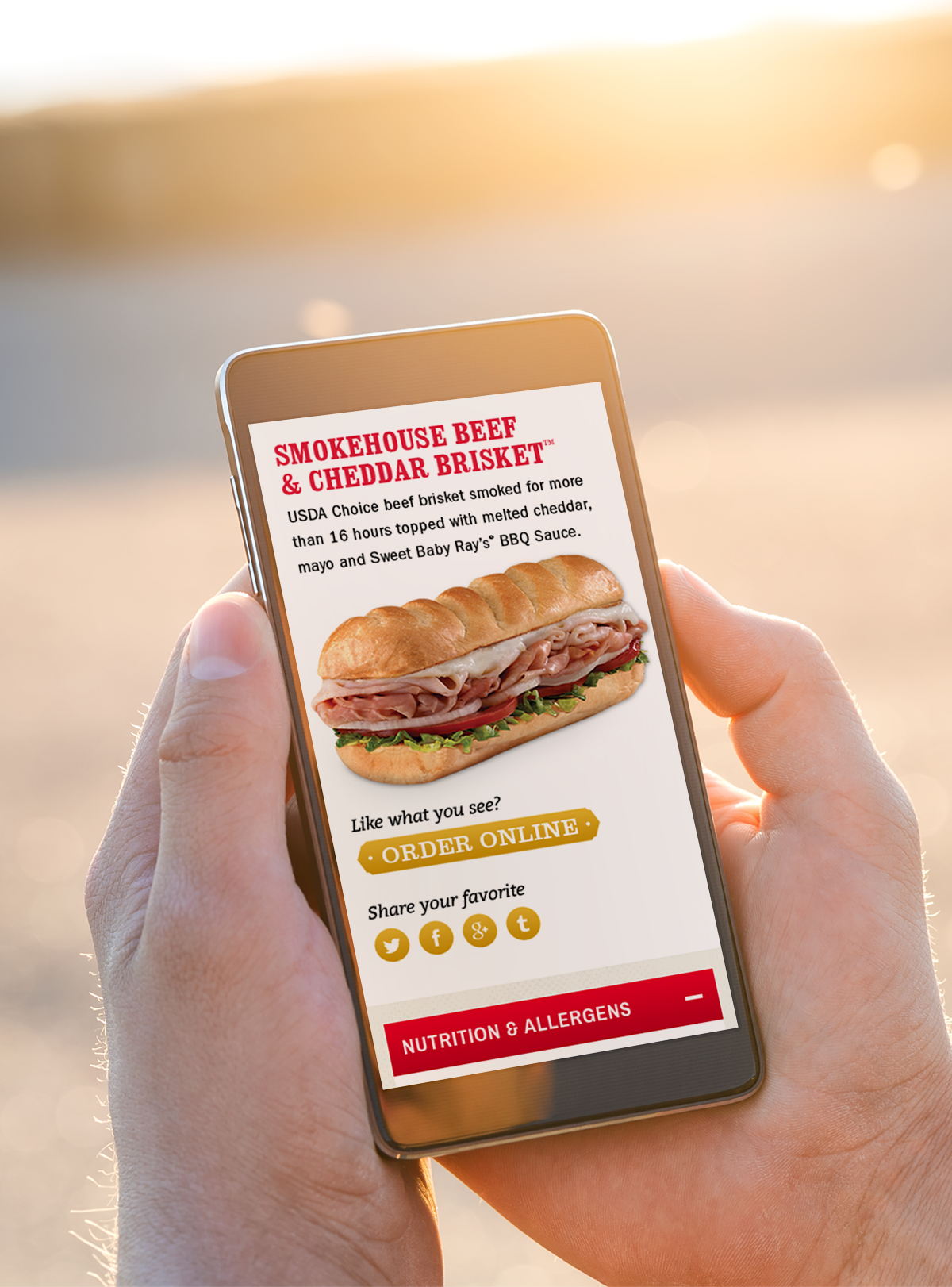 By 2015, online ordering began overtaking phone ordering. Firehouse saw this transition on the horizon and tapped us to create a seamless ordering experience that could be accessed from anywhere.