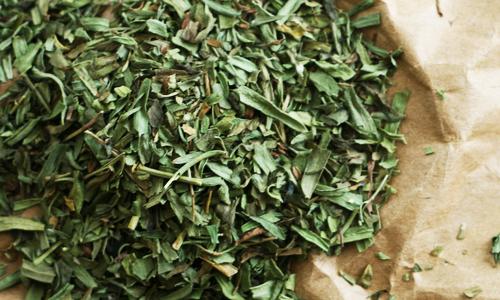 Tarragon<br>Olive Oil