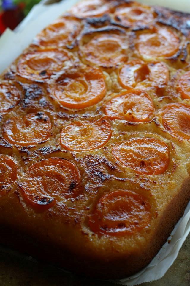 apricot cake.jpg