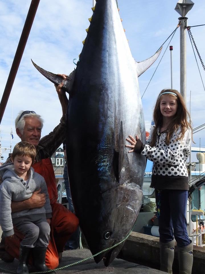North Bay Fisherman's Coop tuna 2.jpg