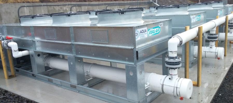 aqua production pic 2.PNG