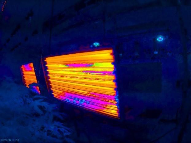 Lights not producing spectrum