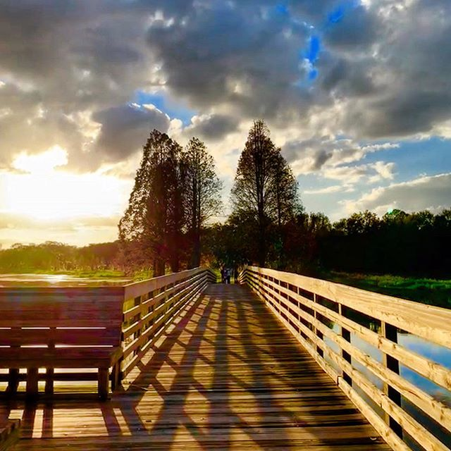 """The path is clear"" ...2/365  #love #beauty #nature #fl #boardwalk #sunset #sky#clouds #trees"