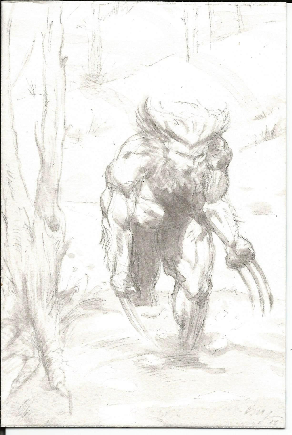 Wolverine_Weapon X.jpg