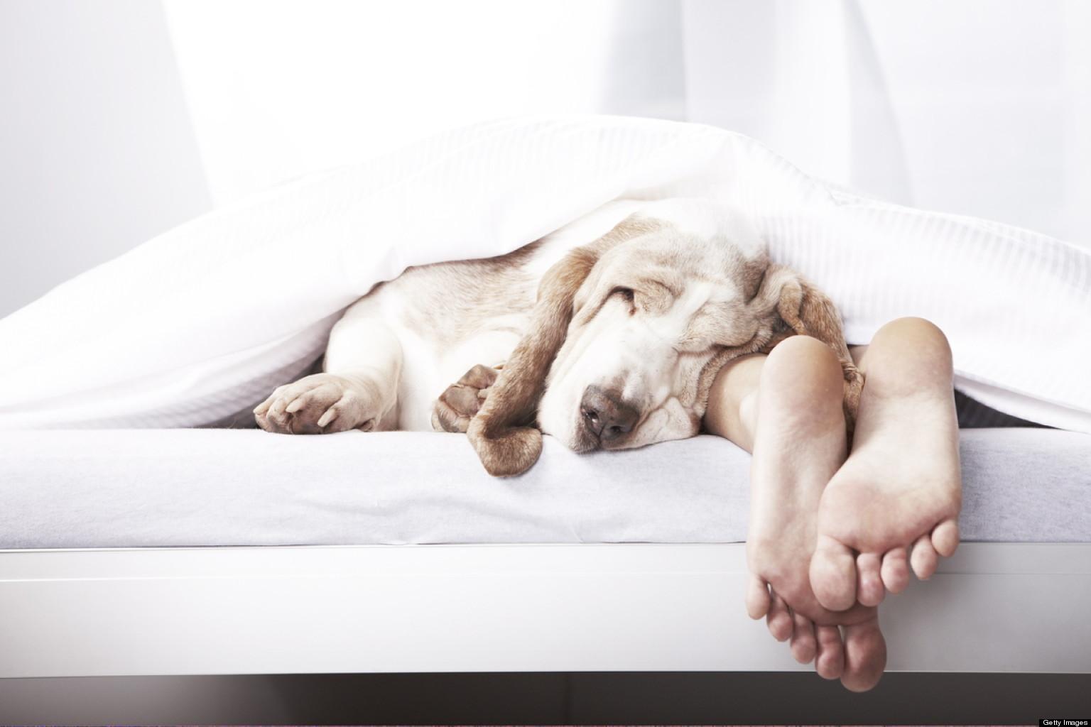o-SLEEP-MISTAKES-facebook.jpg