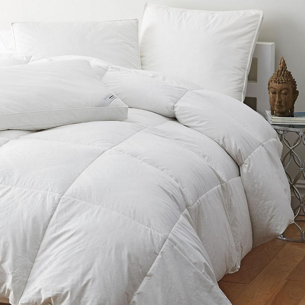 Cozy Comforters.jpg