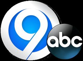 WSYR_2013_Logo.png