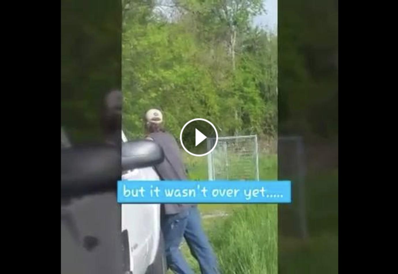 rosie-video