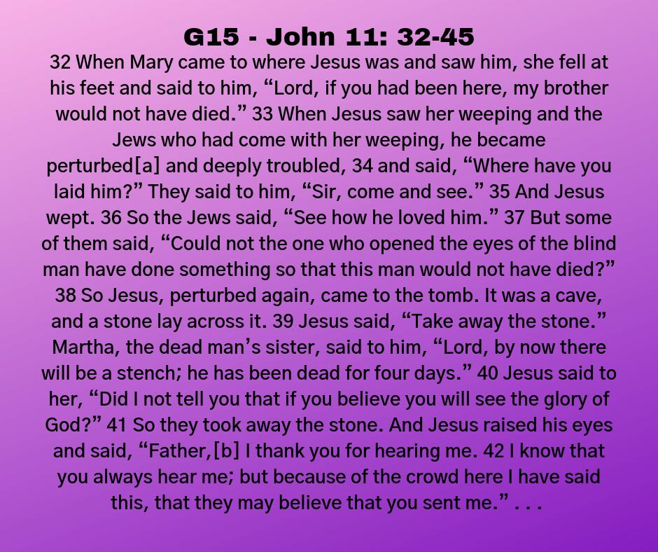 G15 - John 11: 32-45