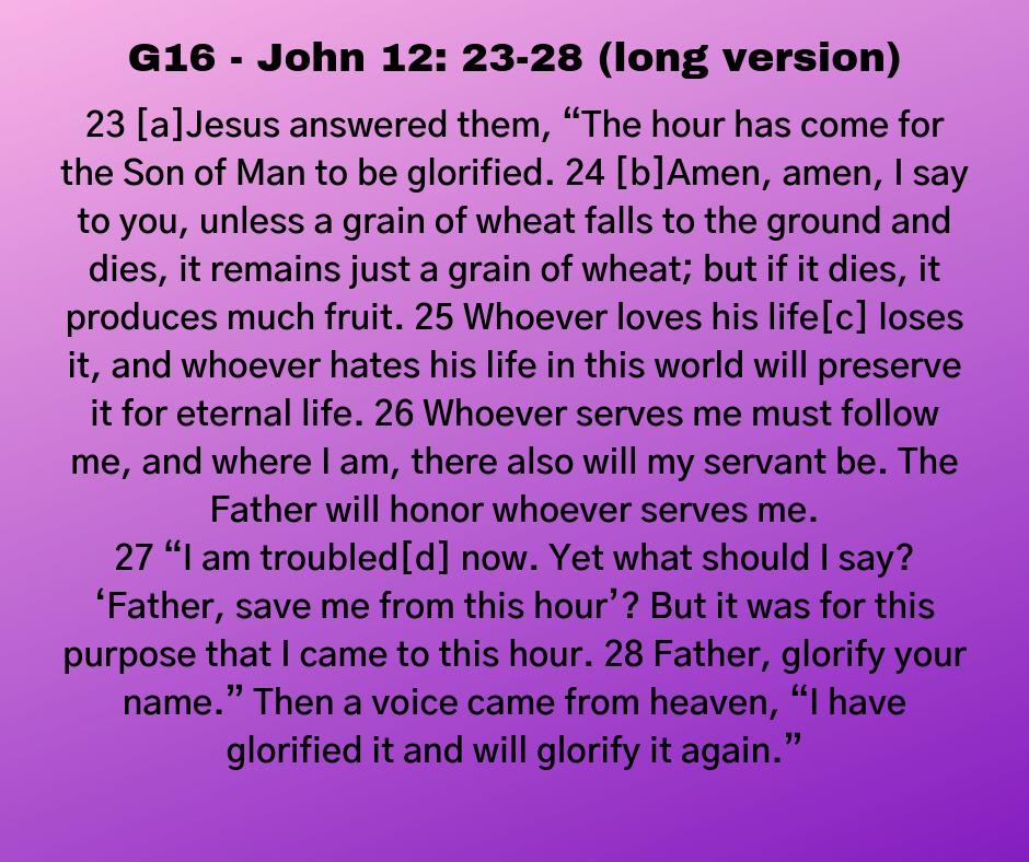 G16 - John 12: 23-28 (long version)