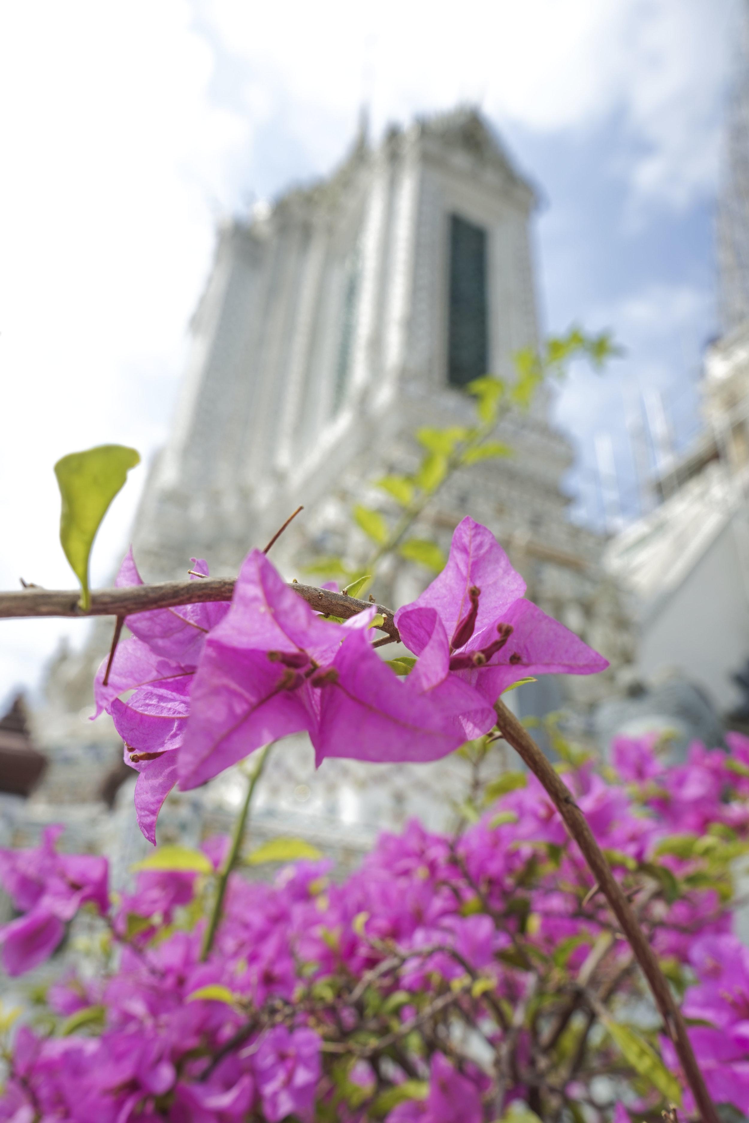 wat | thailand