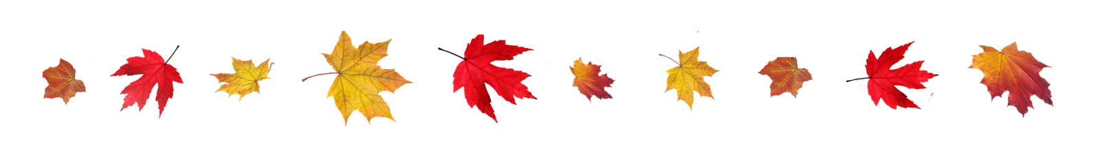 Transparent-Fall-Leaves-Border.png
