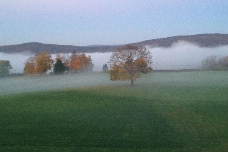 fog750x500.jpg