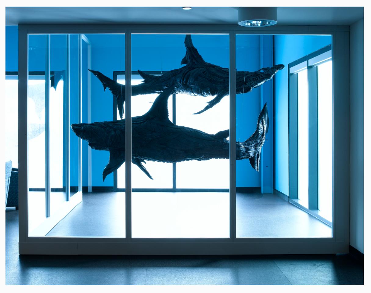 "Yong Ho Ji ""Shark Tank"" at SEI Oaks"