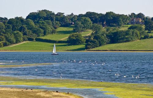 Rutland-water.jpg