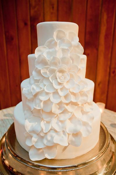Cake_004 (Medium).jpg