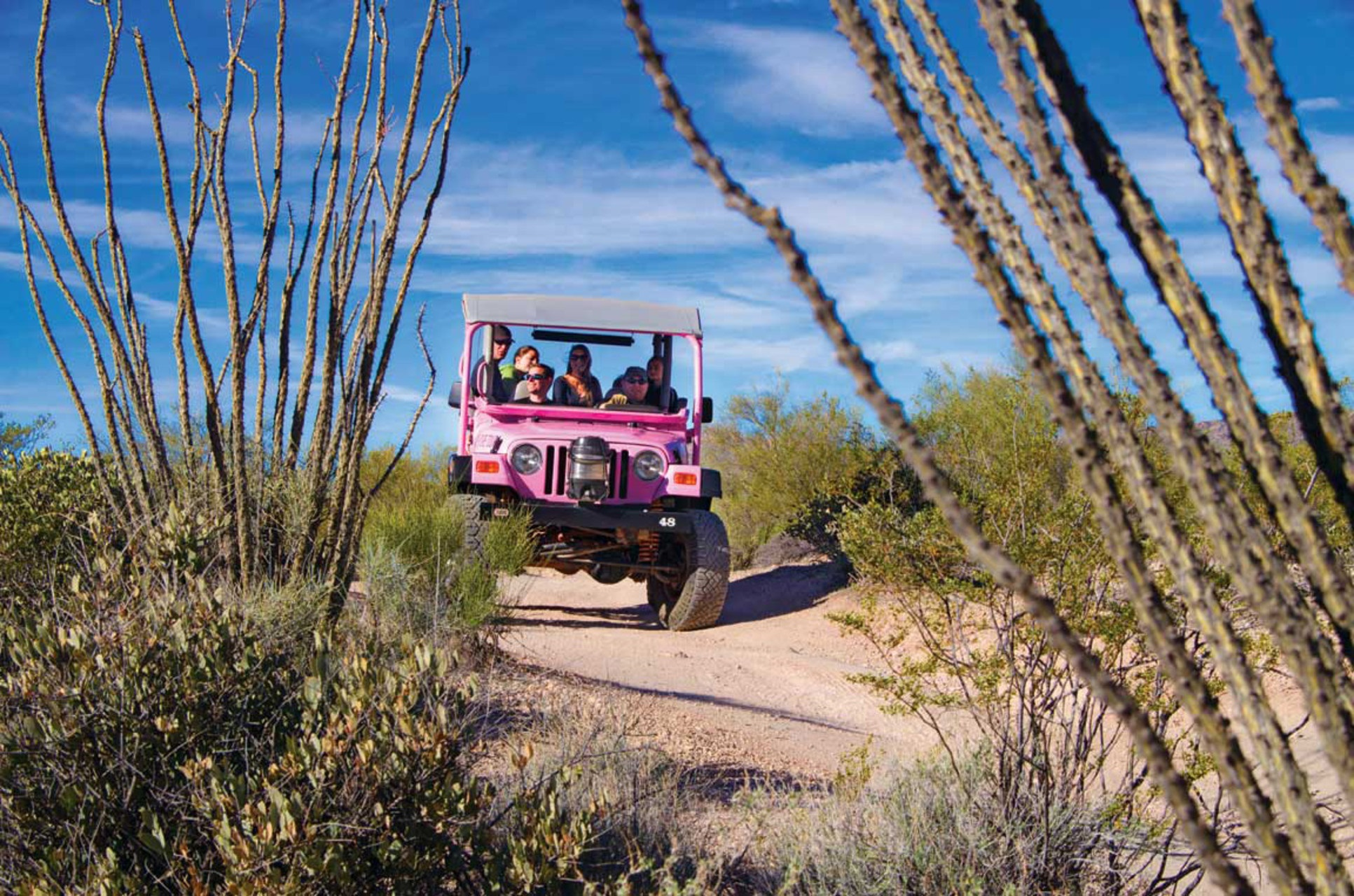 pink jeep.jpg