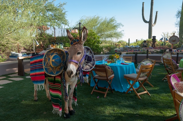 Troon Lawn Mexican Theme Dinner with Beer Burro.jpg