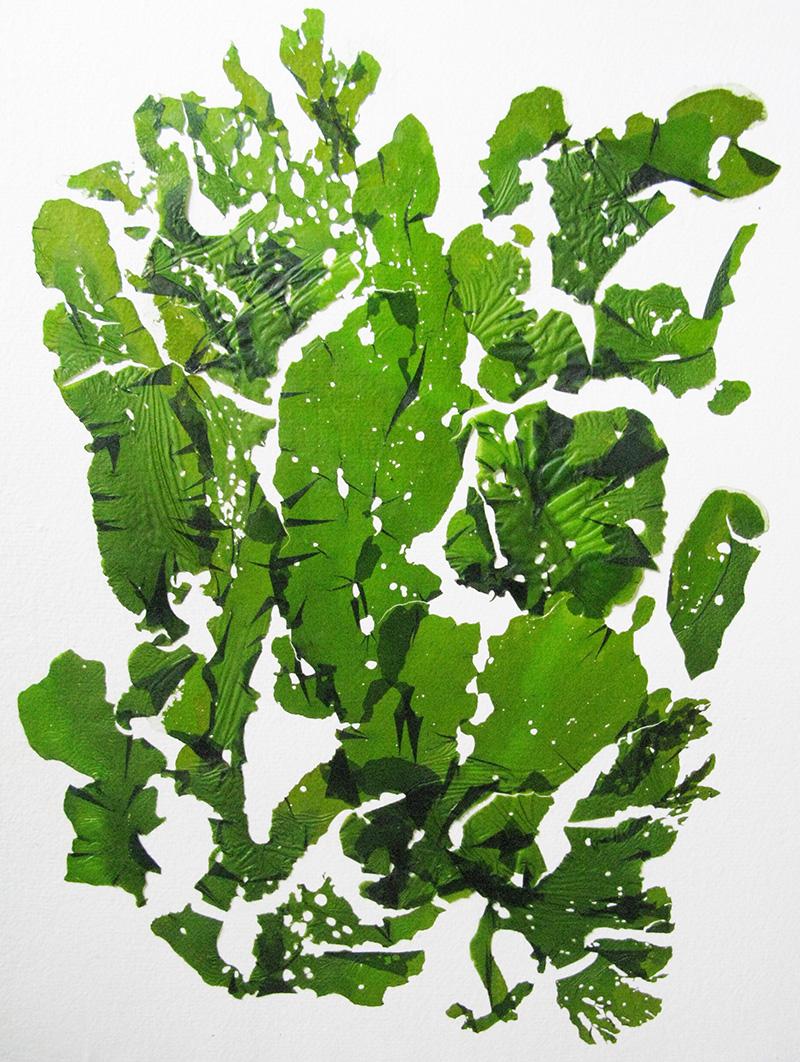 Big_Green_LR.jpg