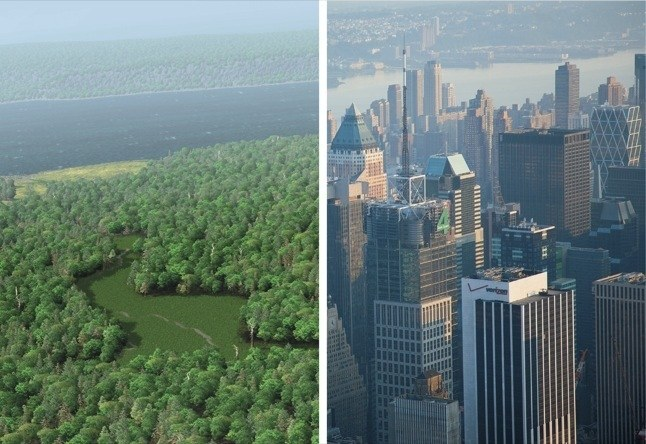 Times Square then and now: the area featured a red-maple swamp frequented by beavers, wood ducks, and elk.   Photographs by Markley Boyer / Wildlife Conservation Society; Michael S. Yamashita / IPN