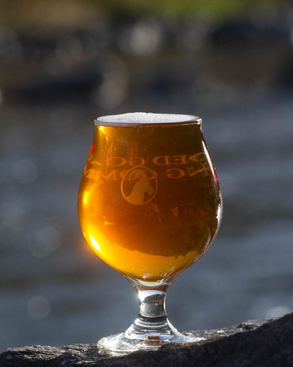 Gilded Goat KapraKolsch Beer