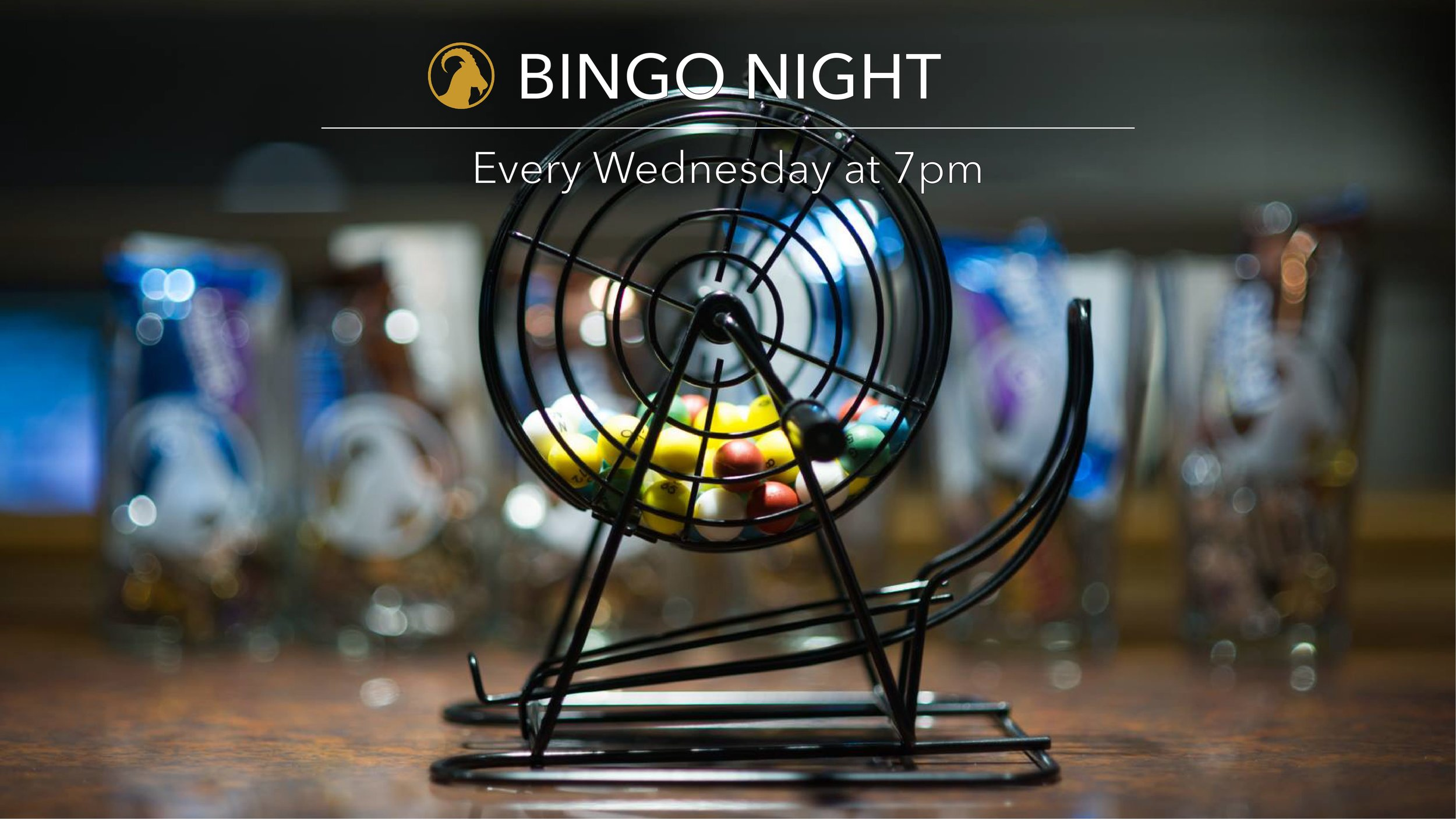 Fort Collins Bingo Night at Gilded Goat Brewing Company