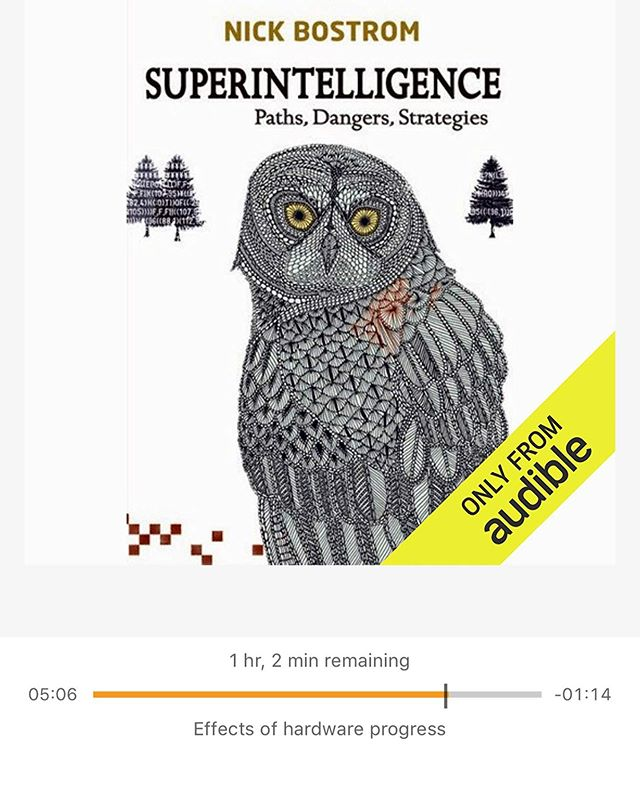 Excellent audio book on artificial intelligence. Recommended by Robert Miles, A.I. researcher. 🤖 #robertmiles #artificialintelligence #singularity