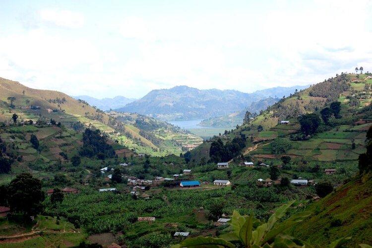 The Kisoro Countryside: Photo from  www.einstein.yu.edu