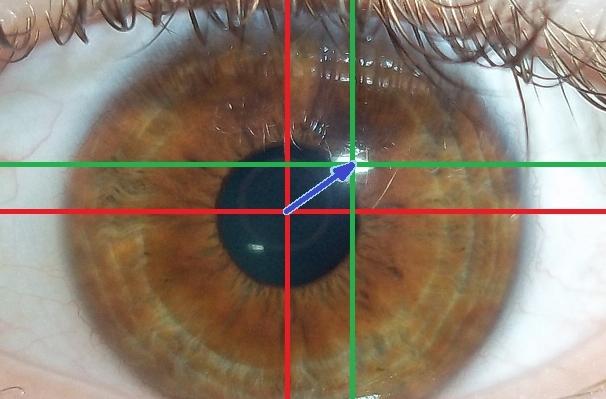 Eye tracking. Image by Björn Markmann.