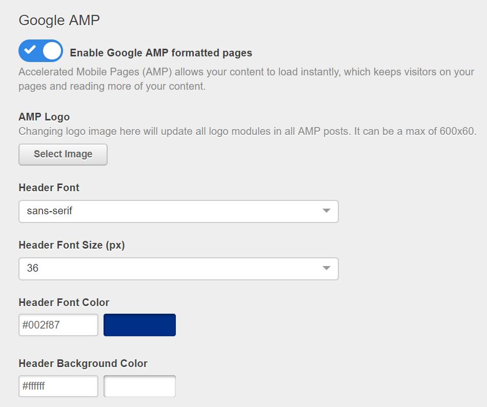 AMP-options.png