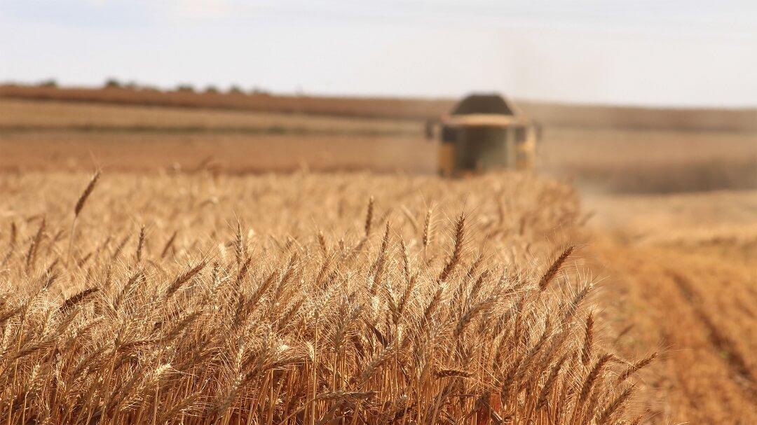 week-4-the-history-of-the-american-farmer.jpg
