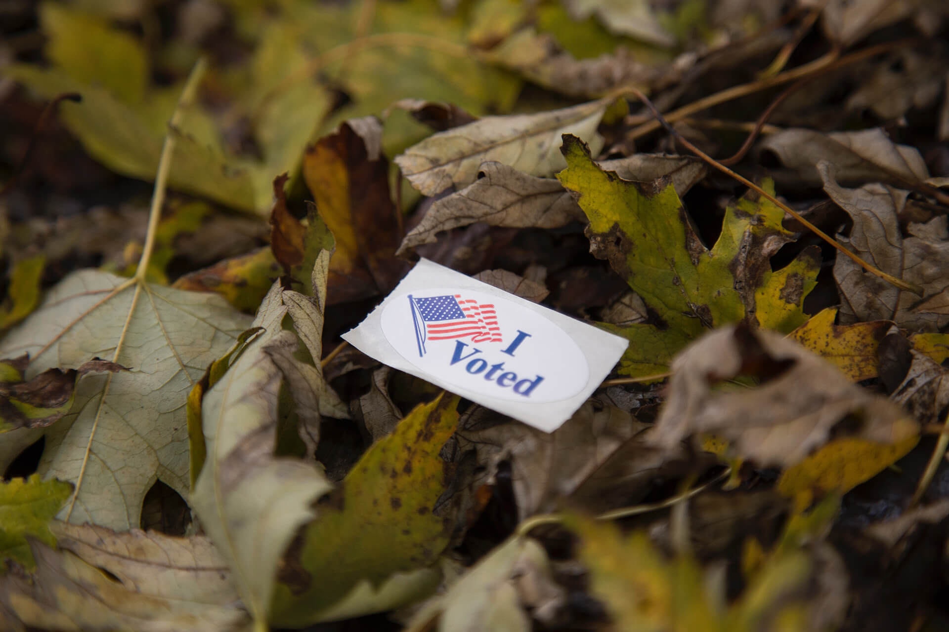 week-39-what-i-need-to-know-about-the-electoral-college.jpg