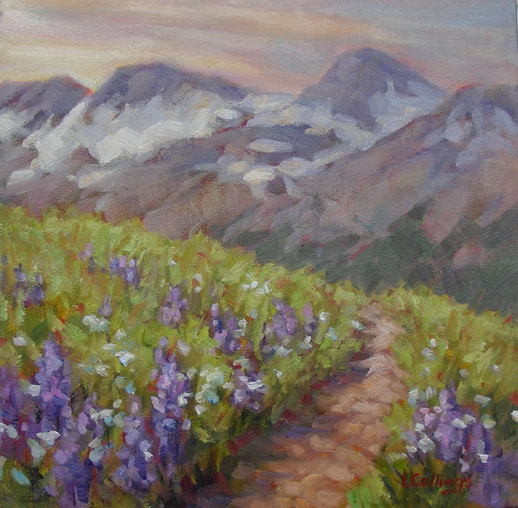 367 - Mountain Lupins, 12 x 12, oil on canvas, $300-.jpg