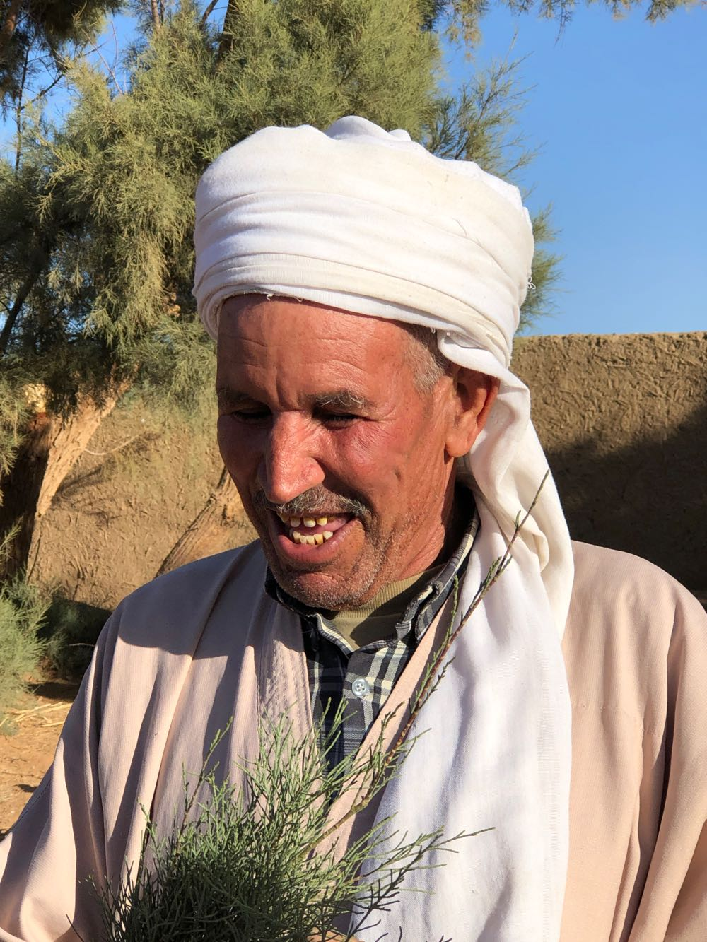 Muhammed with a Tamarisk branch
