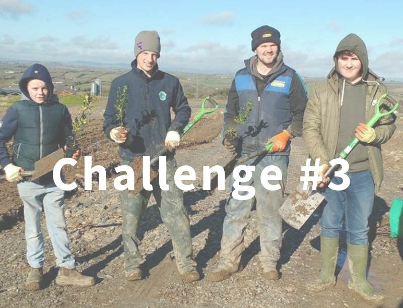 Challenge+3.jpg