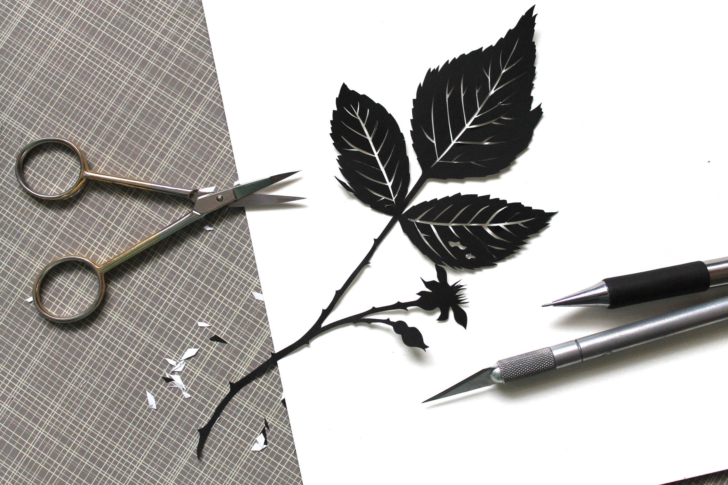 jlf botanical papercutting Ia (1).jpg