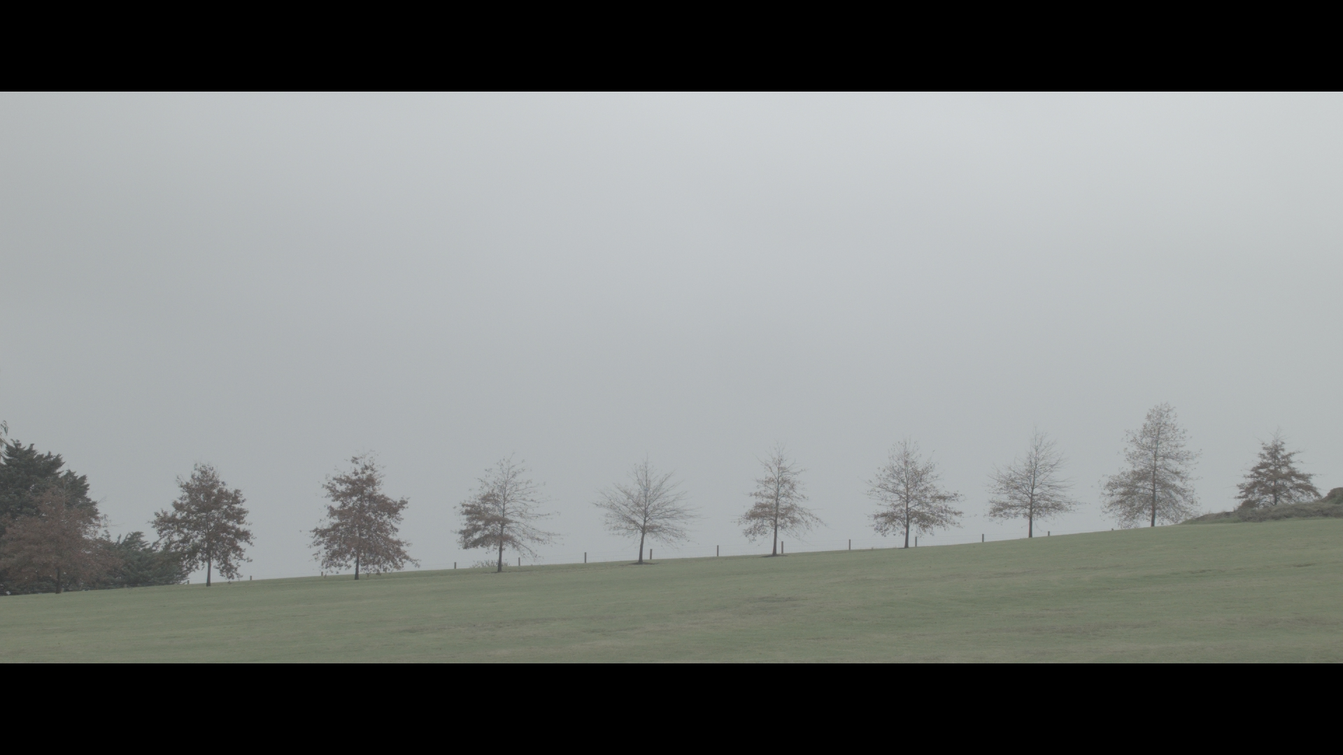 The ungraded still, shot using the Black Magic Pocket, shooting on RAW